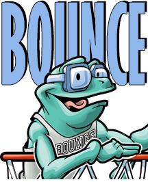 bounceinset_21